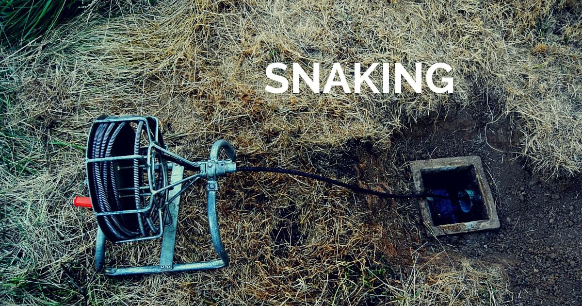 snaking (1)